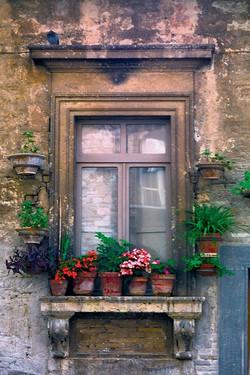 Windowpots