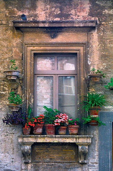 "Window Pots (image size 9"" x 13"") Italy"