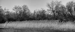 Ancient Lakes 0023