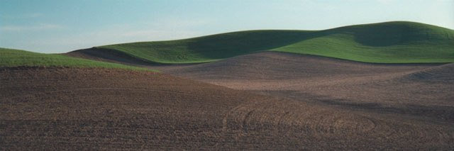 "Soil and Green (image size 9"" x 27"") Palouse region of Washington St"