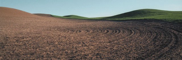 "Circles (image size 9"" x 27"") Palouse region of Washington State"
