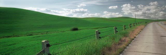 "Old Highway (image size 9"" x 27"") Palouse region of Washington State"