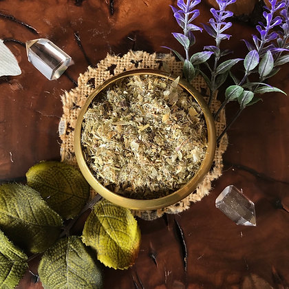 Blessed Thistle (Cut + Sifted)