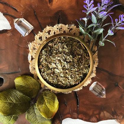 Organic Witch Hazel Leaf (Cut + Sifted)