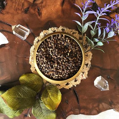 Cardamom Seed (Whole)