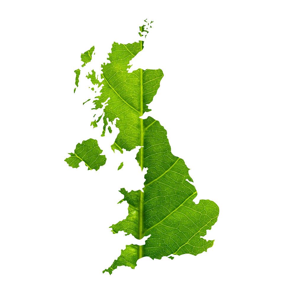 Map of United Kingdom made of green leaf