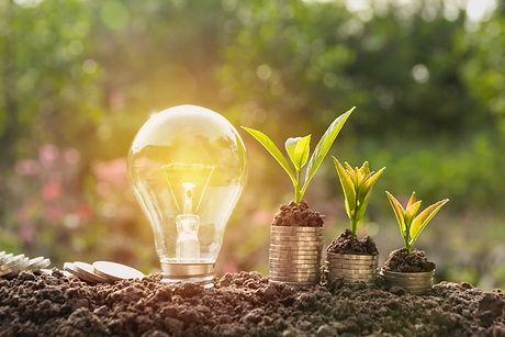 Energy saving light bulb and tree growin