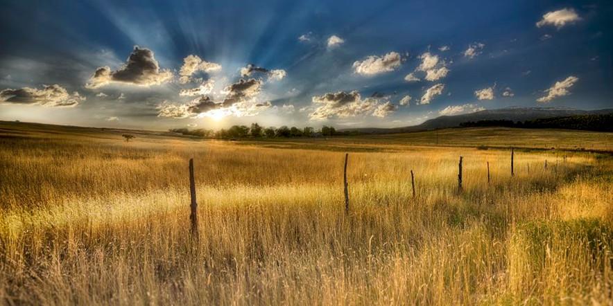 Soleil de Zion (USA)