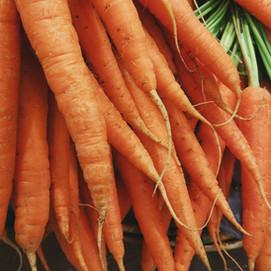 Karottensuppe mit Honig