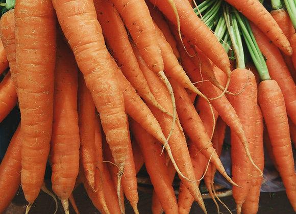 Carrots, Nantes Bunch