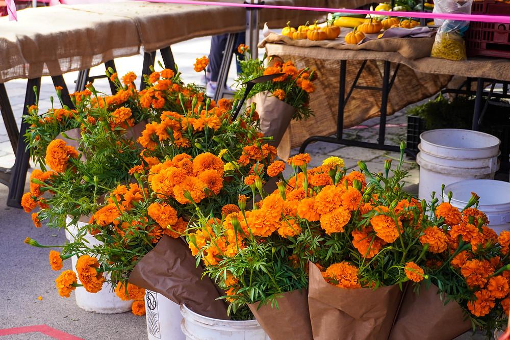 marigold flower floral arrangements