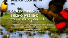 Birding Weekend