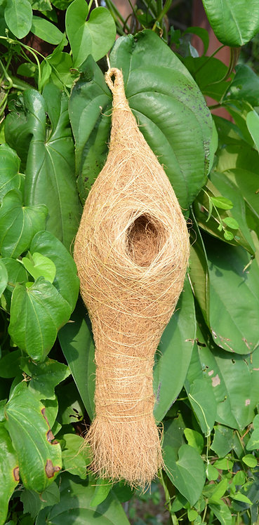 Haastika New Coir Craft Bird Nest for for cage and Balcony Birds Sparrows
