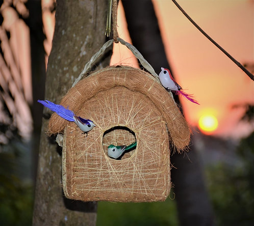 Haastika Safest Classic Hut Bird House Purely Handmade with Easy Hanging Rings
