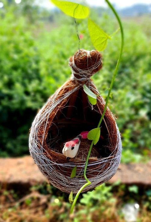 Haastika Handmade Coir & Bamboo Little Birds nest cage Sparrows Finches breed