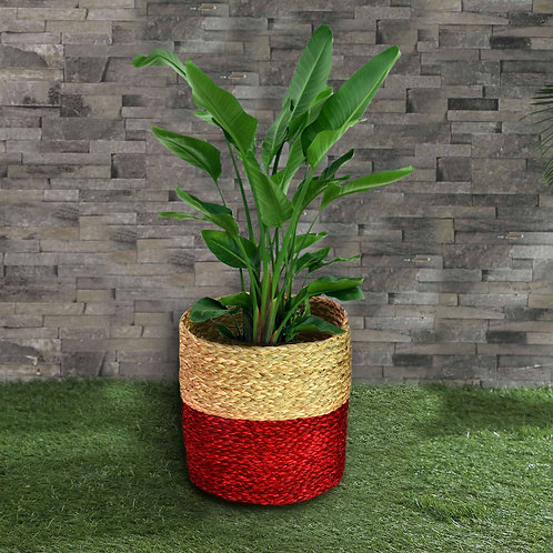 Haastika Red Sabai Planter Basket , Indoor Planter, Balcony, Office