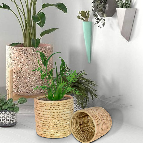 Haastika Date Palm Planter for All Plants Home Room Hall Decor Indoor Outdoor