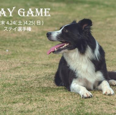 4.24(土)25(日)ステイ選手権