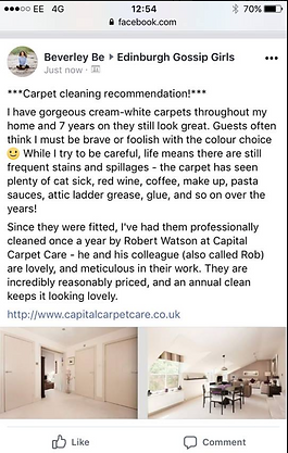 Testimonial for carpet cleaning
