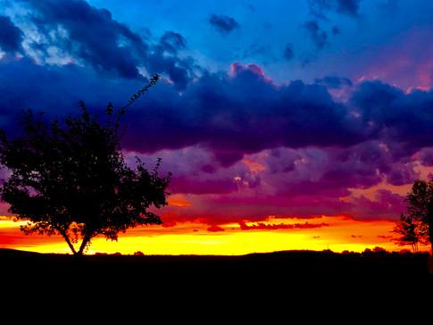 """""""Paintbrush: Saline County Sunrise"""" Amy Weber"""