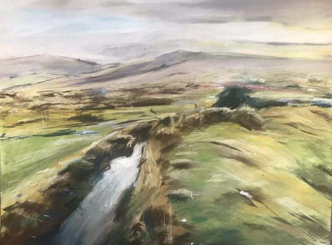 Dartmoor Leat