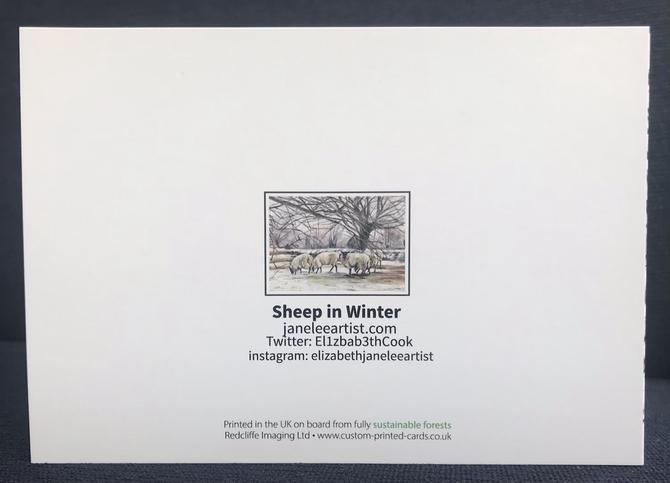 Sheep on Dartmoor