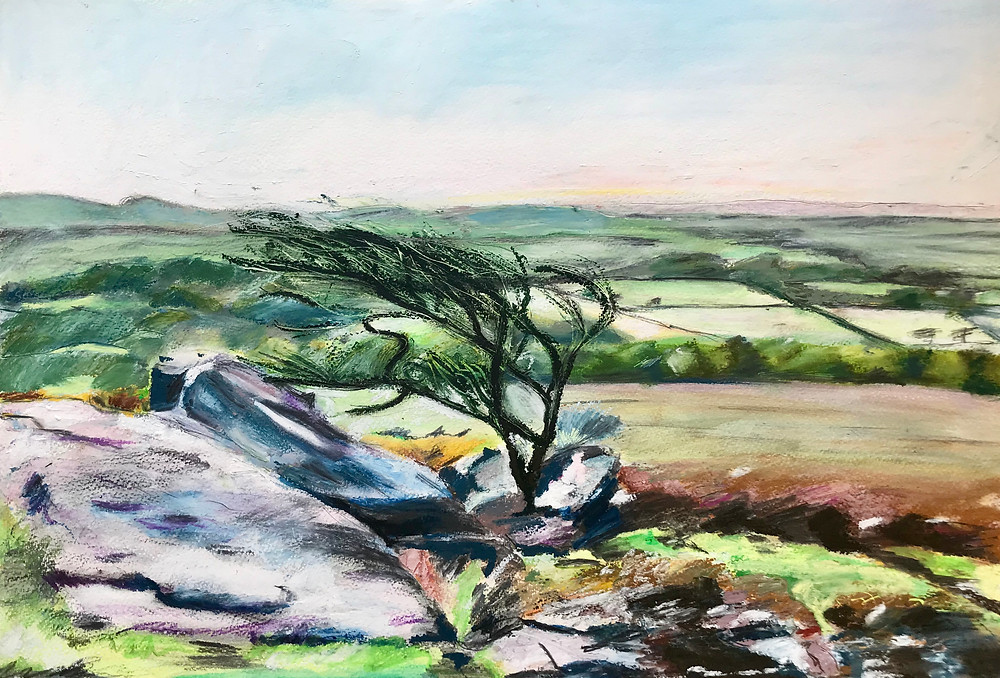 Oil pastel/graphite drawing, windswept tree on Dartmoor, recently sold to private collector