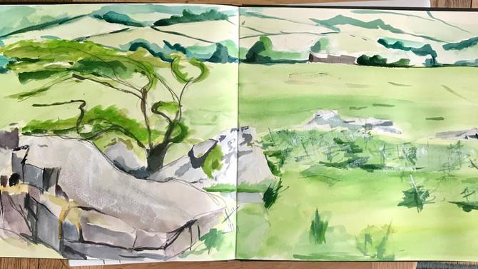 Latest sketch on Dartmoor.