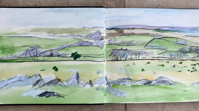 Lovely morning on the moor sketching. Glorious day!