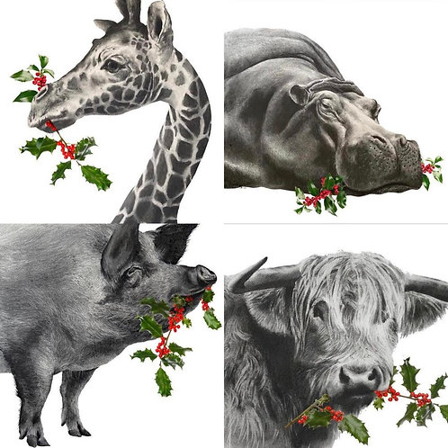 Christmas Cards by Humphrey Bangham -Limited Edition-
