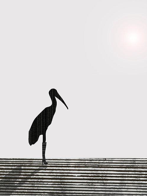 Stork by Rennie P 50x40cm