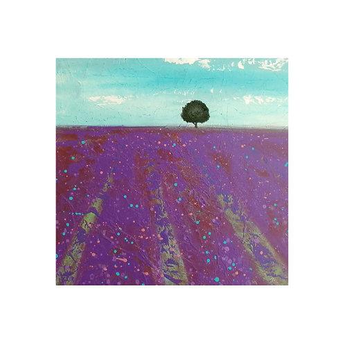 Lavender Field by Suzanne W 40x40cm