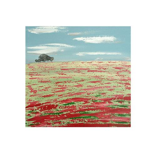 Poppy Field by Suzanne W 40x40cm