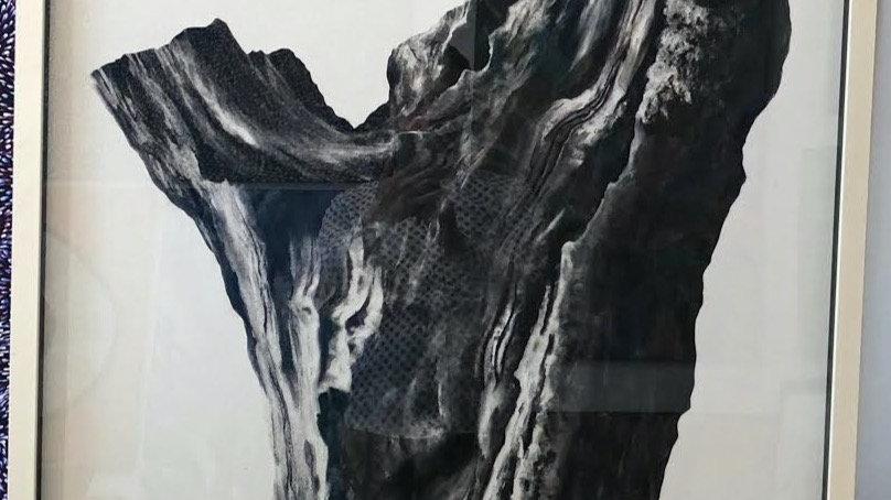 Big Oak Tree Chiswick House by Humphrey Bangham, Charcoal on paper