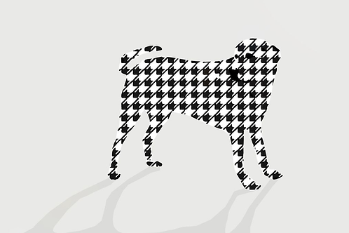 Dogtooth by Rennie P 70x35cm - Sold