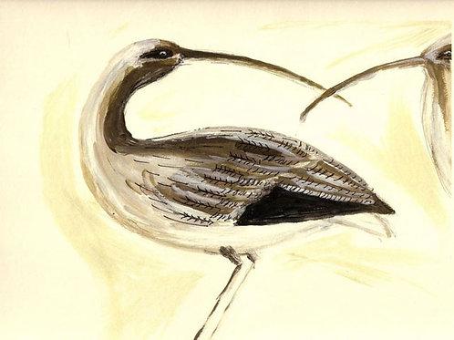 Birds by Jane Vaux 50x40cm