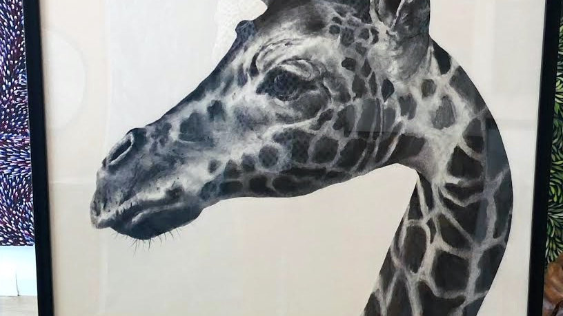 Giraffe by Humphrey Bangham, Charcoal on paper