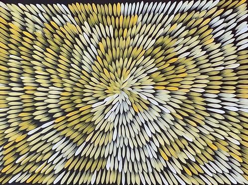 Bush Medicine Leaves, Jacinta Numina 94x68cm