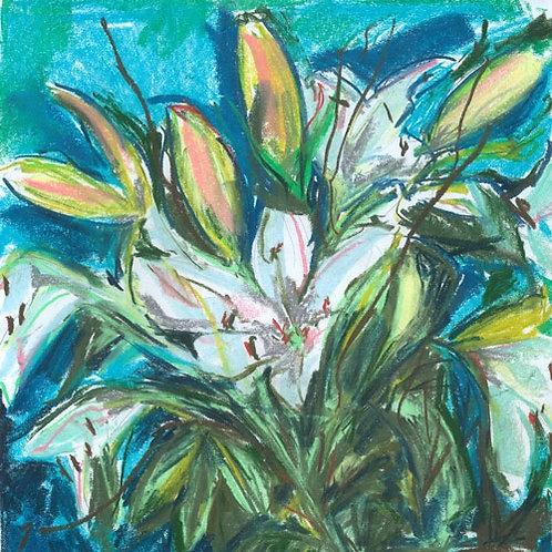 Lilies by Jane Vaux 50x40cm