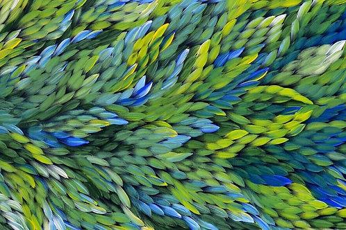 Bush Medicine Leaves, Caroline Numina 165x67cm