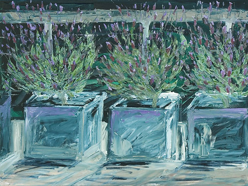 Lavender by Jane Vaux 50x40cm