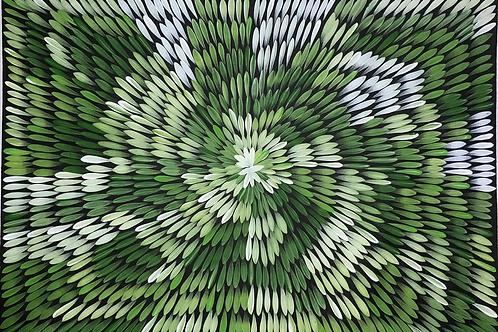 Bush Medicine Leaves, Jacinta Numina 100x70cm
