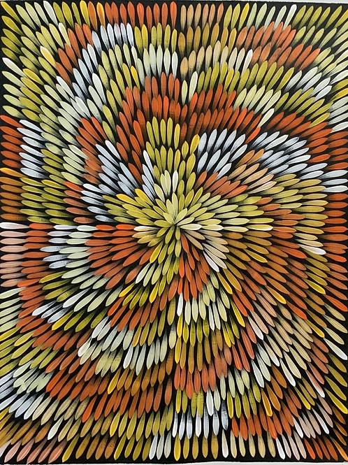 Bush Medicine Leaves, Jacinta Numina 69x88cm