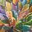 Thumbnail: Bush Medicine Leaves, Caroline Numina
