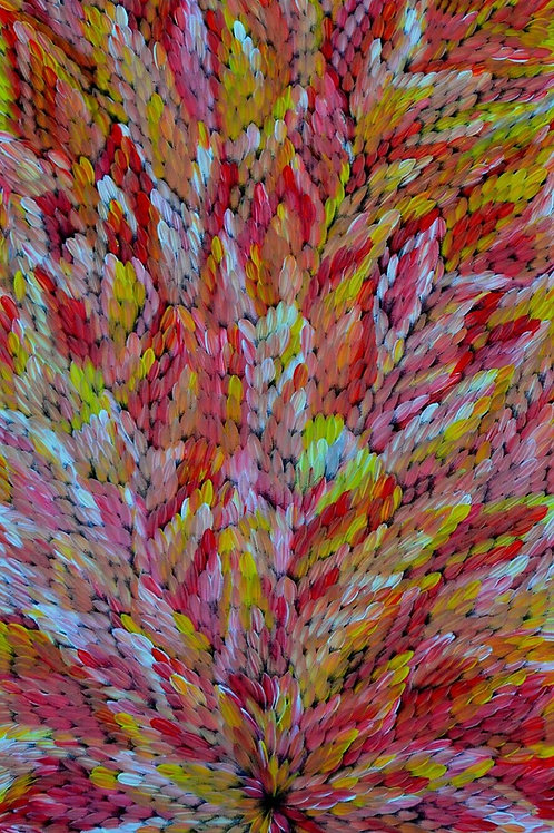 Bush Medicine Leaves, Caroline Numina