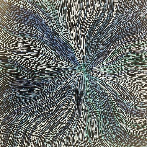 Bush Medicine Seeds, Sharon Numina