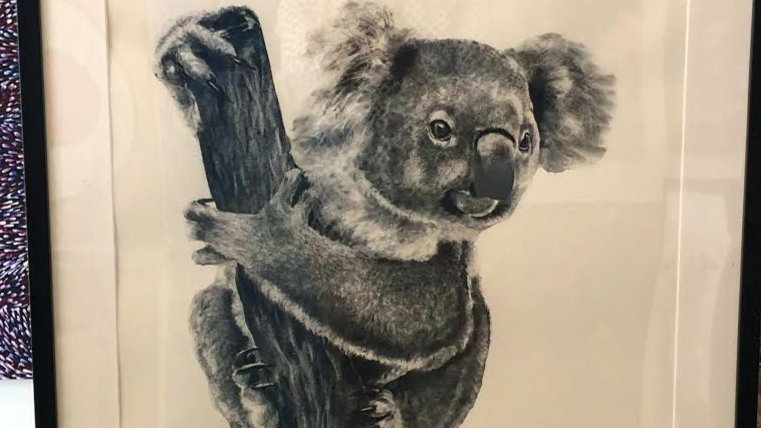Koala by Humphrey Bangham, Charcoal on paper