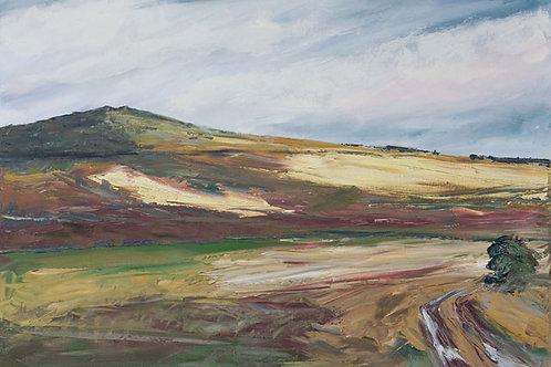 Dartmoor Shadows by Jane Vaux 50x40cm