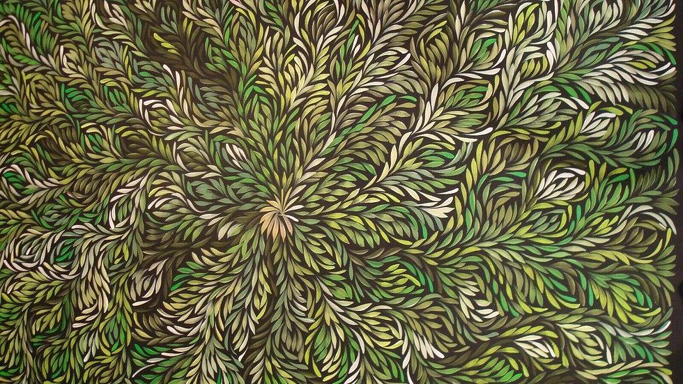 Bush Medicine Leaves, Louise Numina