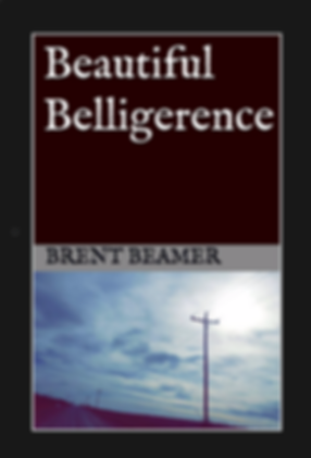 Beautiful Belligerence Cover.png
